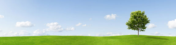 Greener solutions for environmental processes